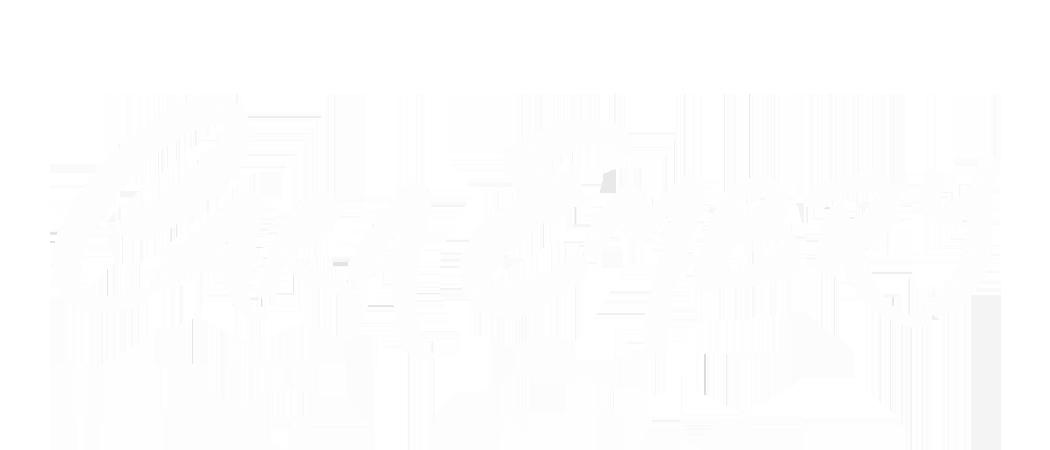 CARA EMBRY  | Portfolio